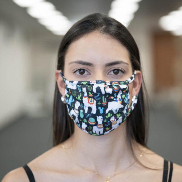 Face Mask - Alpaca
